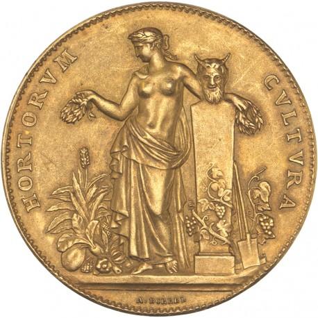 médaille en or - Société centrale d'Horticulture de France