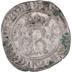 Charles VIII - Karolus de Saint Lô