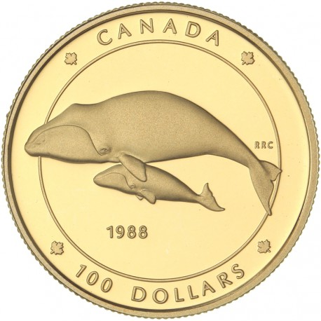 Canada - 100 dollars 1988 - Les baleines