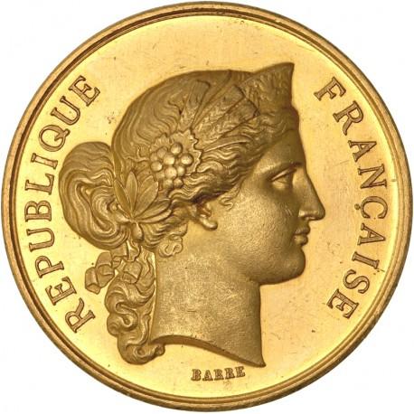 Médaille d'or du concours Ministère de l'Agriculture et du Commerce - 1875
