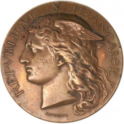 Médaille de bronze concours Ministère de l'Agriculture 1900
