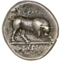 Lucanie - Statère de Thurium