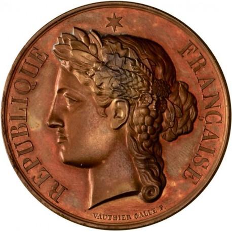 Médaille du mérite - Lycée Janson de Sailly