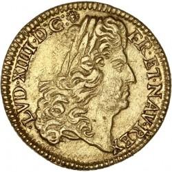 Louis XIV - Louis d'or à l'écu -1691 K